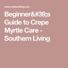 Beginner's Guide to Crepe Myrtle Care - Southern Living