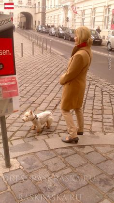 Street fashion in Vienna.  Fashion for older woman. The lady with the dog. Woman with West Highland White Terrier. Josefsplatz, 1010 Wien, Österreich.