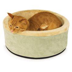 Nobby Ceramic Cat Bowl 14cm Pretty And Colorful Diameter