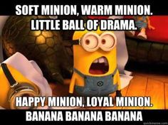 ♥ Minions My friend taught me this song SOFT KITTEN WARM KITTEN LITTLE BALL OF FUR HAPPY KITTEN LOYAL KITTEN PURR PURR PURR i am so happy they made a minion one!