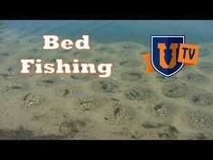 Fishing Bass Spawning Beds