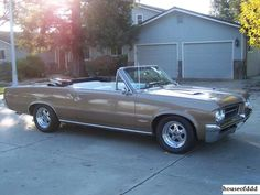 Classic Old GTO Muscle Cars 1964-1974 Car Pictures
