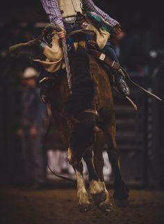 "jeffreykedwards:  ""Texas rodeo….  """