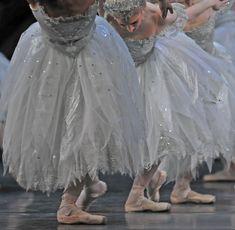 Royal Ballet corps de ballet Taking a moment to breathe. Ballerina Dancing, Little Ballerina, Ballet Tutu, Ballet Dance, Dancing Shoes, Shall We Dance, Just Dance, Ballet Costumes, Dance Costumes