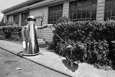 Robot dog walker, 1978