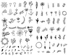 Hand-Drawn Vector Kit + 15 Logos - Illustrations - 2