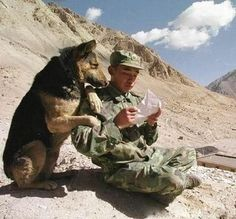 memorial day dogs and their soldier In honor of our soldiers (and their best friends). Military Working Dogs, Military Dogs, Police Dogs, Funny Military, Military Quotes, Military Pictures, Military Service, Military Army, Animals And Pets