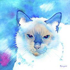 Siamese  Eyes Painting