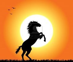 rearing up wild horse fine vector silhouette – Tiere Cute Horses, Pretty Horses, Horse Love, Beautiful Horses, Silhouette Painting, Horse Silhouette, Silhouette Vector, Shadow Painting, Horse Rearing