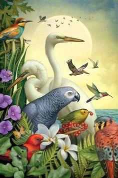 Migratory Birds -- by Dan Craig, illustration and advertising via Berstein and Andriulli Art And Illustration, Migratory Birds, Communication Art, Tropical Art, Wildlife Art, Surreal Art, Bird Art, Beautiful Birds, Pet Birds
