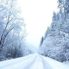 Winter road to home (Zilina - Slovakia)
