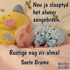 Goeie Nag, Afrikaans Quotes, Good Night Sweet Dreams, Good Night Quotes, Morning Greeting, Disney Quotes, Cute Quotes, Birthday Wishes, Sleep Tight