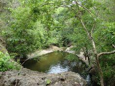 """El Saltón, Cabañas.   Ubicado en el Parque Ecológico """"Bosque de Cinquera"""" con sus aguas verdes y frías.."""