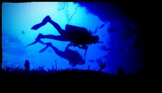 https://flic.kr/p/sm96of | Dive buddies | Into turtle cave to feel what it's like.....