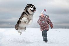 «Маленькие дети и их большие собаки» — фотопроект Андрея Селиверстова - Ярмарка Мастеров - ручная работа, handmade