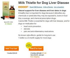 Dog liver disease can be helped by milk thistle, which is a great herbal dog remedy