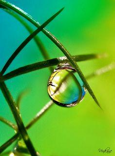 La naturaleza es igual que la mujer.   Hermosa y completa mientras que el hombre no la destruya. -Karen Jocelyn