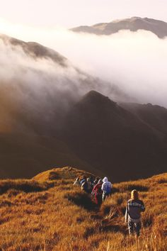 Mt. Pulag, Philippines | Miss CMSB #Trekking  #Beautiful_Places #YourNewRoommate