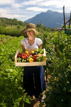8 Ways to Join the Local Food Movement | Eartheasy Blog