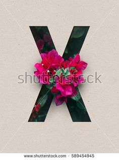 Unique Letter X alphabet made of real blooming flowers and leaves with paper cut. Illustration of floral alphabet collection for design project, poster, card, invitation, brochure and scrapbook