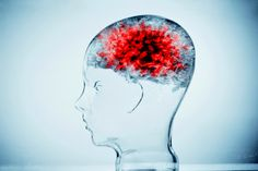 Cellphones are affecting your brain: research claims that exposure to cellular radiation leads to neurological degeneration
