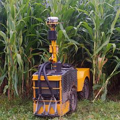 A Nimble-Wheeled Farm Robot Goes to Work in Minnesota The latest in autonomous farming is a robot that weaves between corn stalks, applying fertilizer as it goes. | MIT Technology Review