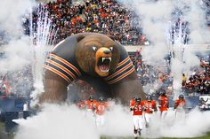 Chicago Bear