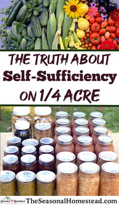 The Truth about Self-Sufficiency on a Quarter Acre - The Seasonal Homestead Homestead Layout, Homestead Farm, Homestead Gardens, Homestead Survival, Survival Skills, Compost, Self Sufficient Homestead, Types Of Farming, Olive Garden