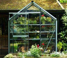 Evika Greenhouse 6 x 2 ft Old Window Greenhouse, Greenhouse Heaters, Modern Greenhouses, Louvre Windows, Canopy Shelter, Garden Site, Garden Fencing, Back Gardens, Garden Supplies