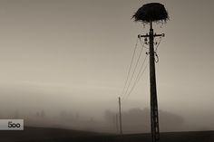 somewhere nothing by Sebastian Rudnicki on 500px