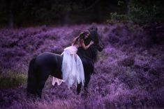 Horse Girl Photography, Equine Photography, Animal Photography, Photography Poses, Jonna Jinton, Horse Photos, Beautiful Horses, Ponies, Photoshoot
