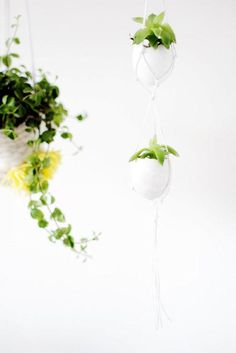 Hanging egg planter -- If you're going au naturel this gardening season, reuse some of those eggs from breakfast for your tiny plants.