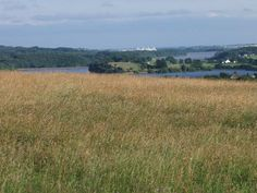 The view south across Rivington's reservoirs, and the Reebok Stadium, home of Bolton Wanderers.