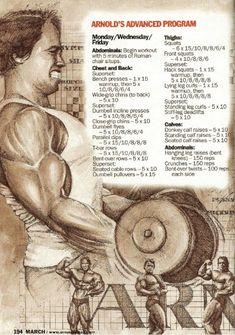 Arnold 5