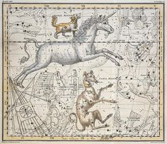 Monoceros, from 'A Celestial Atlas', pub. in 1822 Wall Art & Canvas Prints by A. Jamieson
