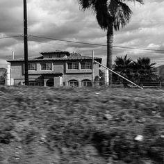 Peeking Through Also  #builtlandscape - #Baja #BajaMexico #BajaCalifornia #Mexico #roadside  #exploreMexico #bnw #blackandwhite  #bw_society #bnw_captures #bnw_mexico #scenesofMX #scenesofmexico #visitmx #mexicophotography #exploremx #MX #daylight #travel #travelgram #NorthAmerica #horizon #landscape #built