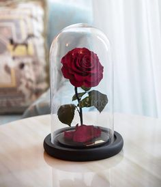Rose Water Globe Decorations Party Decor Water Globes Rose