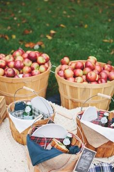 Fall apple picking. So romantic!