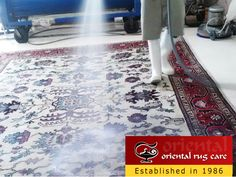 Oriental Rug Cleaning Fort Lauderdale Rug Cleaning Fort Lauderdale Rug Cleaners Fort Lauderdale Rug Cleaner Fort Lauderdale Cleaning Rug Fort Lauderdale Rug Repair Fort Lauderdale Rug Restoration Fort Lauderdale Rug Cleaning Service Fort Lauderdale Oriental Rug Cleaning Service Fort Lauderdale