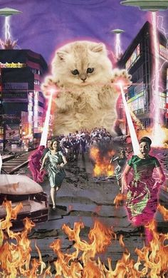 Comando Valquiria - My list of the most beautiful artworks Trippy Wallpaper, Cat Wallpaper, Crazy Cat Lady, Crazy Cats, Gatos Cool, Funny Animals, Cute Animals, Photos Originales, Space Cat
