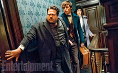 MOVIES: Fantastic Beasts and Where to Find Them - News Roundup ...