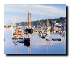 Simply awesome that is what you and your guest will be able to say after seeing this beautiful Sea scenic nature art print poster. This wall poster shows the image of Camden Harbor scene with sailboats into the sea is sure to catch lot of attention. This poster will surely transform the entire look of your living room, bedroom or wherever you want to hang. Hurry up and buy this wall poster for your beautiful home for its high quality and 100% color accuracy.
