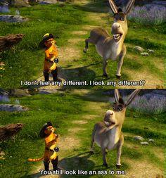 My friends to me Shrek Quotes, Shrek Memes, Movie Quotes, Funny Memes, Hilarious, Disney Comebacks, Disney Memes, Disney Quotes, Dreamworks Movies