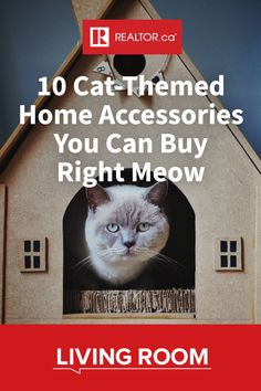 In celebration of International Cat Day, we've curated 10 cat-themed accessories and décor items you can buy for your home right meow 🐱