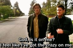 """No. You...you did sit in some glitter, though."" - Sam  #SPN  6.09  Clap Your Hands If You Believe"