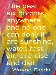 The best six doctors anywhere and no one can deny it are sunshine, water, rest, air, exercise and diet. - Wayne Fields #becomemore @BeyondFitAustin #quotes