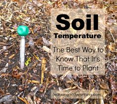 It's spring! But is it time to plant? One of the most accurate ways to determine spring planting time is soil temperature – not air temperat...