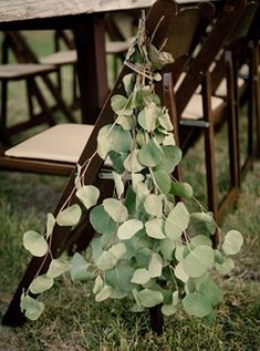 Loving these eucalyptus leaves gathered and tied to backs of chairs of ceremony aisle.