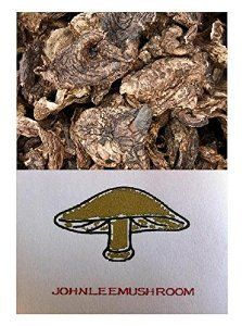 Sarcodon aspratus Pilz getrocknet 1200 Gramm Himalayas Mushroom & Truffles http://www.amazon.de/dp/B00W1RV6VM/ref=cm_sw_r_pi_dp_STO8vb18P2YR7