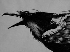 Ink art (Crow) by ~kpinedo
